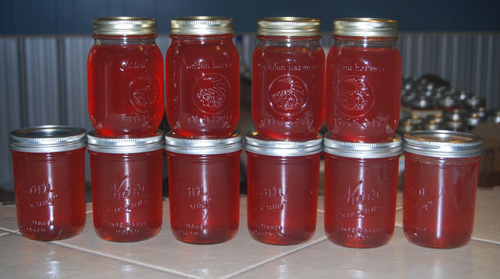 The classic way to use the fruit... Mayhaw Jelly!