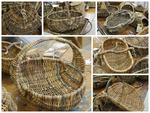 Basketry and crafts are a common use for Willow