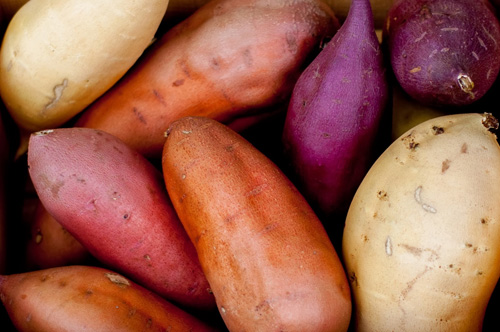 Permaculture Plants Sweet Potatoes & Permaculture Plants: Sweet Potatoes | Temperate Climate Permaculture