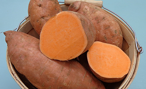 The classic Sweet Potato seen in the U.S.