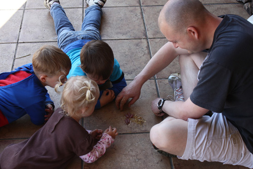My kids and me with some baby mice I found in the garden. Terceira Island, Azores