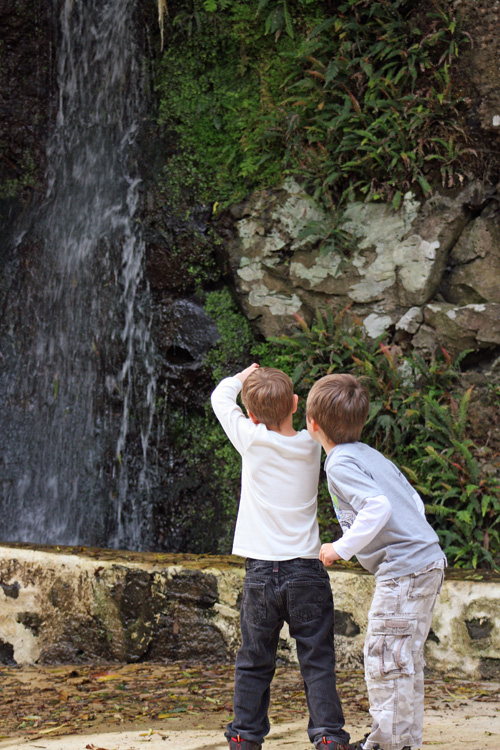 My boys taking photos of a waterfall. Me at the botanic gardens. Terceira Island, Azores