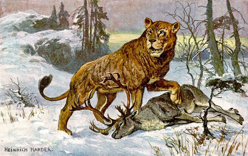 Artist's rendition of an American Lion.