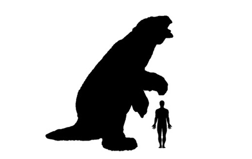 Ground Sloth size comparison.