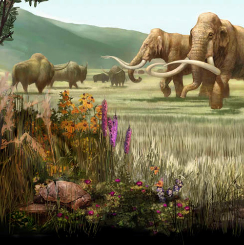 The savannas of North America were home to a wide variety of herbivores.