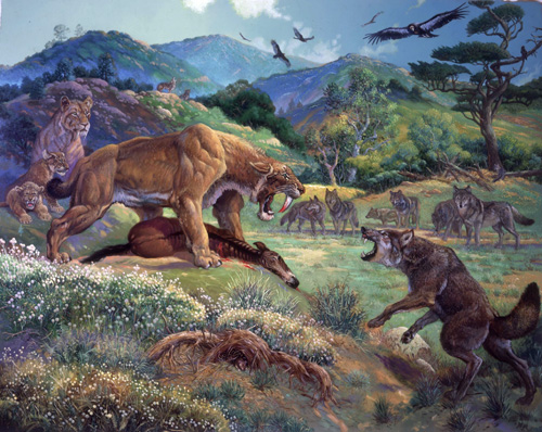 There were numerous predators in the North American savannas.