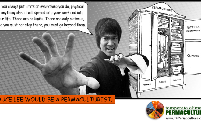 Bruce Lee would be a Permaculturist