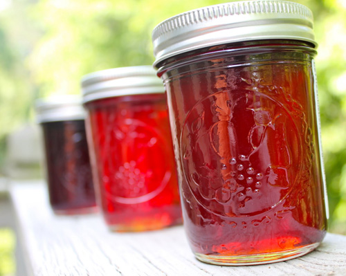 Muscadine jelly is a Southern treat!