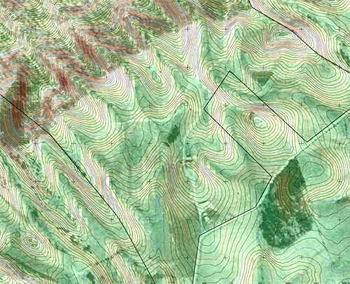 Topographic map of the same location as the aerial map above. (Massive thanks to Anthony Bailey for building the topographic map!).